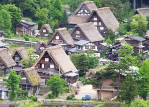 写真2.中部山岳地域の雪深い地域に典型的な集落(岐阜県白川村)。かつて日本ではこのように住居や燃料として周辺の植物を利用していた。写真提供 藤嶽 暢英氏